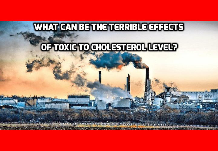 What Can Be the Terrible Effects of Toxic to Cholesterol Level? Omega-3 has long been believed to hold the key to lowering high cholesterol level naturally, and the best source of omega-3 comes from fatty fishes. So people who eat the most fish should have the lowest cholesterol level, right? A new Canadian study put this theory to the test by researching the one population that eats more fish than anyone else, and the results were surprising.