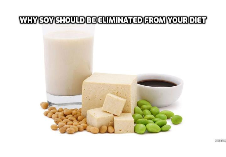 Why soy should be eliminated from your diet? Contrary to popular belief, soy isn't truly a health food. In fact, soy can be harmful to the body because it contains dangerous anti-nutrients and toxins. Scientific studies reveal that high levels of soy consumption can actually be unhealthy. Here, you will find 10 good reasons to avoid soy products.