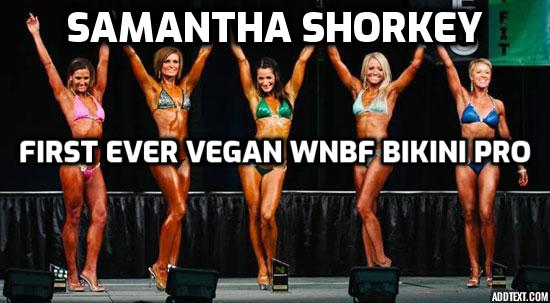 Vegan Bikini Contest Prep – Samantha Shorkey, 1st ever vegan WNBF Bikini pro talks about the advantages of being a vegan as a bikini competitor, her training for a bikini competition and what she eats during off season and when preparing for competition