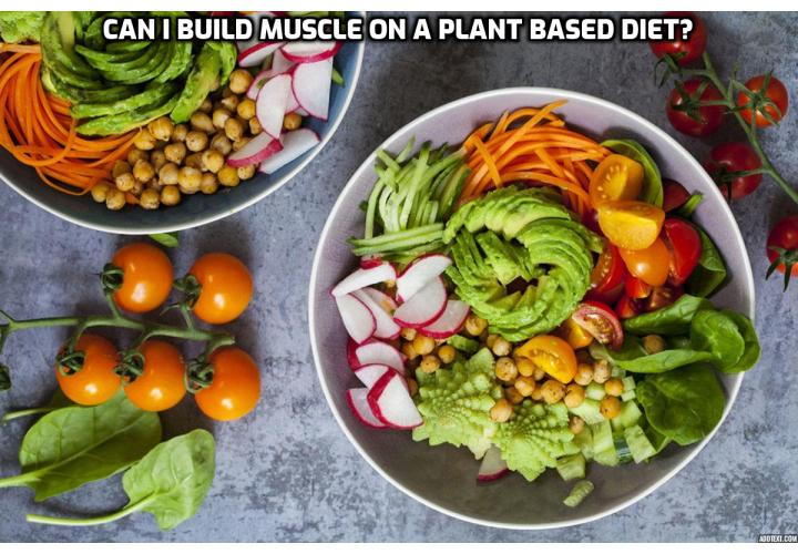 James H. Hatchel, III, a personal trainer, shared about the path that led him to plant-based fitness, his sample meal plan for building muscle, training regiment, tips for success in fitness and advice for someone who wants to try a vegetarian diet.