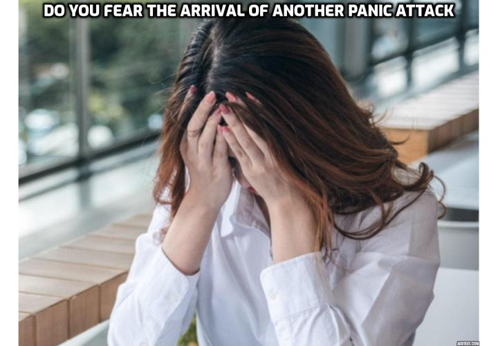 Stop Panic Attacks Forever - Do you fear the arrival of another panic attack? Read on to learn more about Barry McDonagh's Panic Away program, which is designed to help people around the world deal with their anxiety and avoid panic attacks.