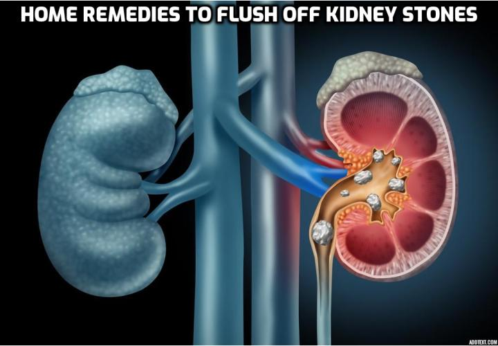 Kidney stones are hard, solid wastes that build up in the kidneys leading to crystal formation. There are four types such as calcium oxalate stones, struvite, uric acid, and crystalline stones. Amongst all most existing type and 80% of all stones are calcium oxalates. To treat this severe condition, here are best 8 home remedies to flush off kidney stones.